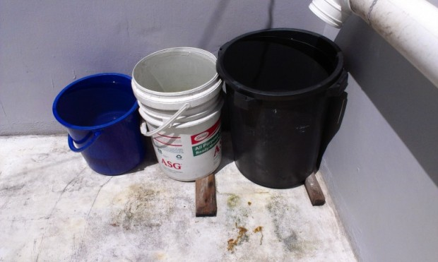 One rubbish bin, one paint container, one bucket