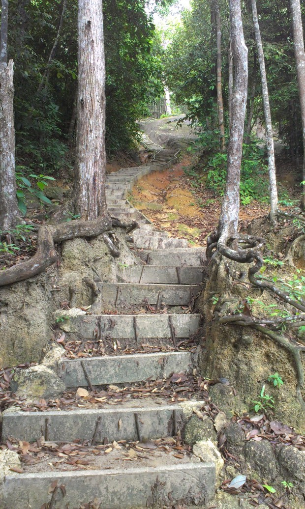 at first there are a lot of steps going up - which is quite tiring