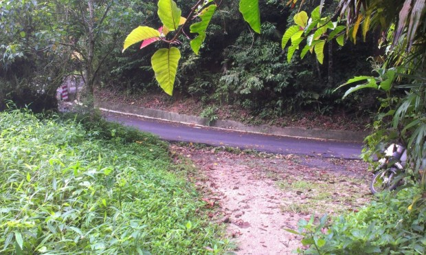 and then you see the road - that ascends to Penang Hill