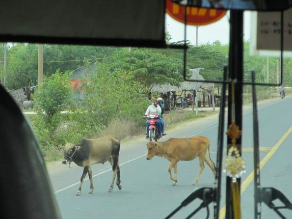 20130328_into-Cambodia (26)s