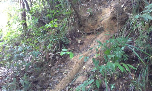 mud bank