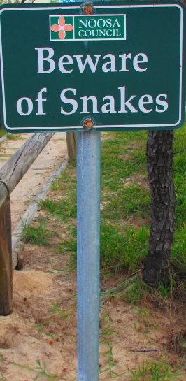 snakes - yikes