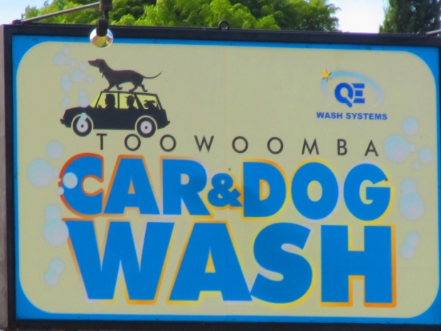 seems to be a theme in this part of the world - wash your dog and car...
