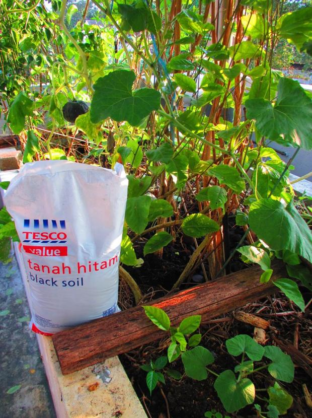 Tesco soil