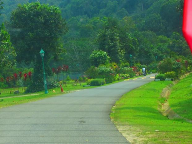 the road into the Berjaya Resort
