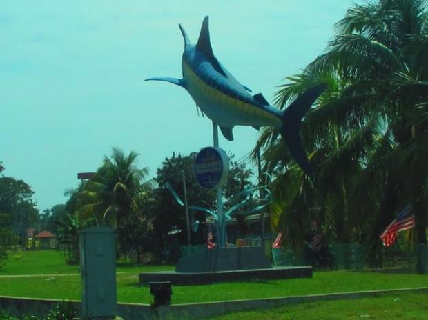 big dolphin?