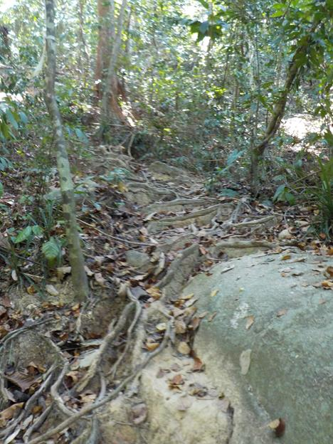 much of the path is climbing through rocks