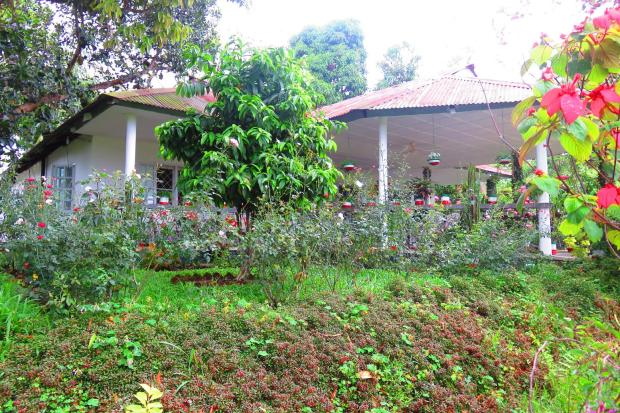 tea plantation manager's house