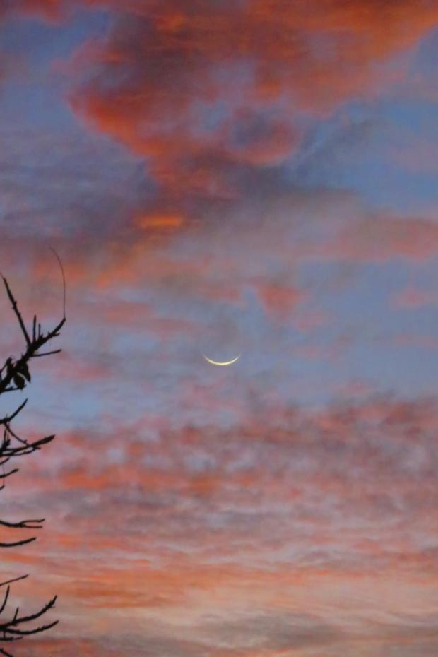 a nice dawn with the new moon last week