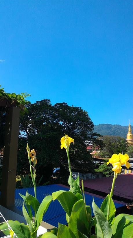 Penang January 2016
