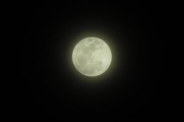 20161114-supermoon-06-copy
